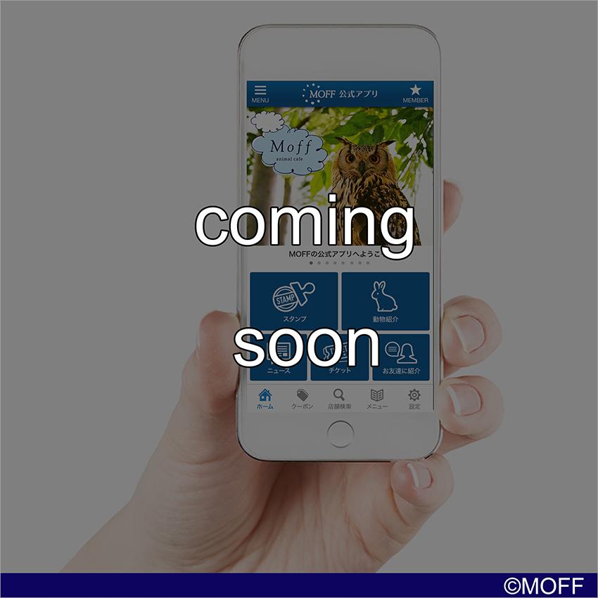 ▲ MOFF公式アプリ(準備中)
