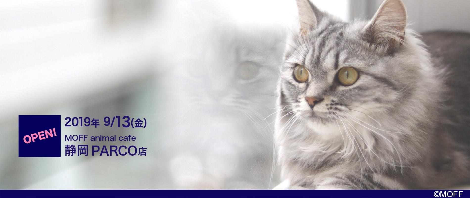Moff animal cafe 静岡PARCO店 2019年9月13日オープン!