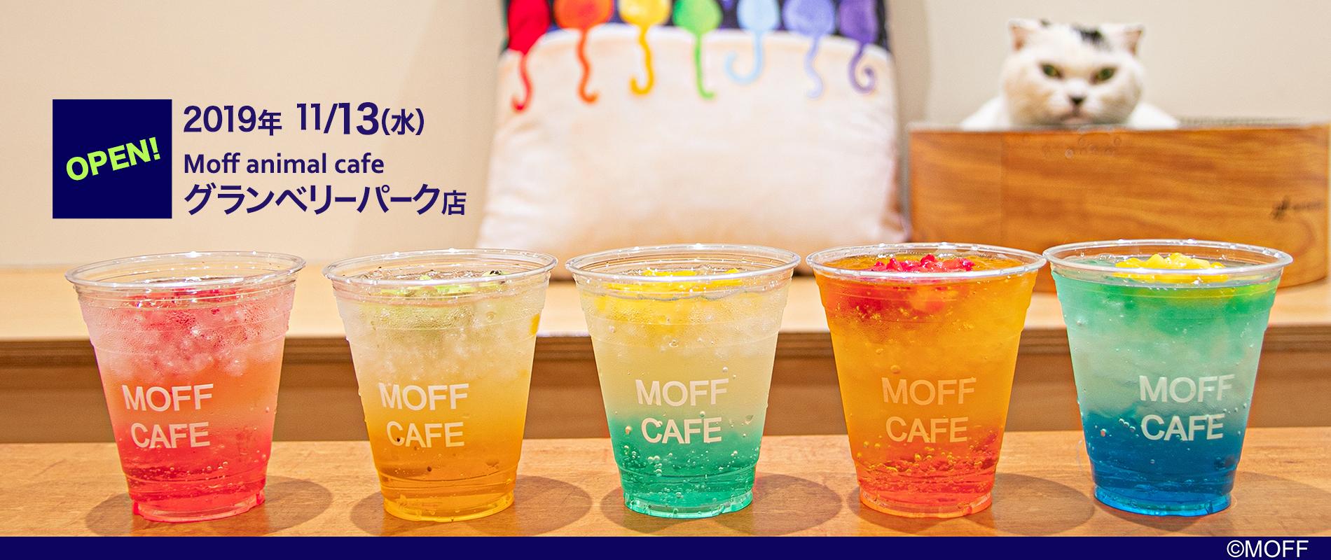 Moff animal cafe グランベリーパーク店 2019年11月13日オープン!